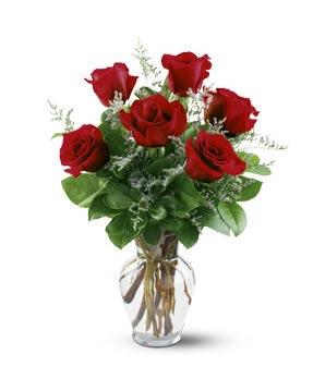 RADIANT REFLECTION! Half Dozen Premium Roses in Magnolia, TX | ANTIQUE ROSE FLORIST
