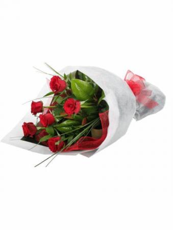 Half Dozen Premium Roses Red or Mixed Colors