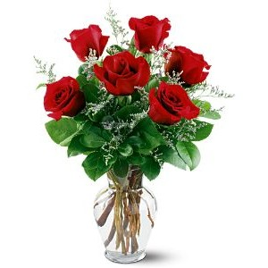 Half Dozen Red Roses in a Vase