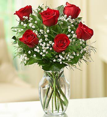HALF DOZEN RED ROSES ROSES