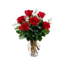 Half Dozen Roses Half Dozen Red Roses