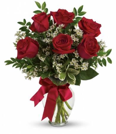 Half Dozen Roses Any Color Roses
