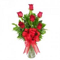 Half Dozen Roses  Traditional Half Dozen Roses