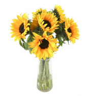 Half Dozen Sunflowers Flower Arrangement