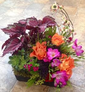 Half N' Half plant and fresh cut Basket Garden