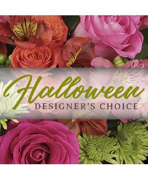 Halloween Arrangement Designer's Choice in Chelmsford, MA | East Coast Florist