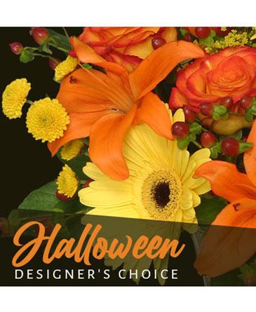 Halloween Designer's Choice