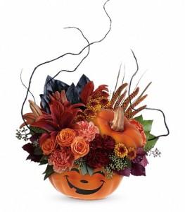 Halloween Magic Arrangement