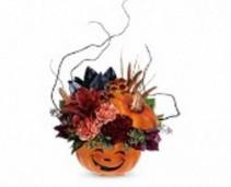 Halloween Magic Pumpkin Hoilday, Halloween
