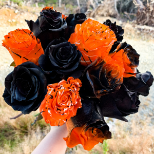 Halloween Rose Dozen Limited Time! in Mount Pearl, NL | MOUNT PEARL FLORIST