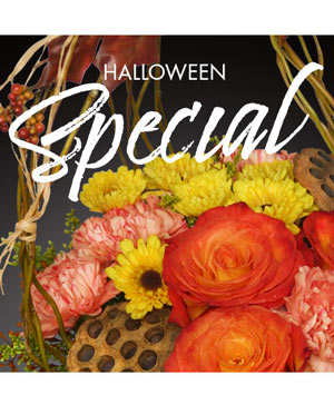 Halloween Special Designer's Choice in Nelson, BC | GEORAMA FLOWERS