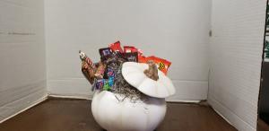 Halloween treats please Halloween in Mora, MN | DANDELION FLORAL & GIFTS