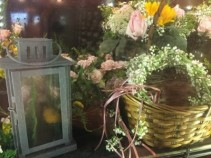 Halos/ to lantern arrang. babysbreath halos/ centerpieces