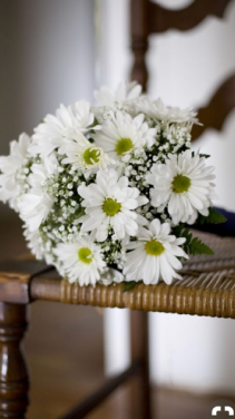 Hand Held Solid White Daisy