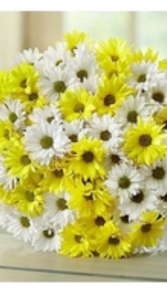 Hand Held Yellow and White daisy bouquet