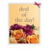 Hand Tied Cut Flowers  Best Sellers