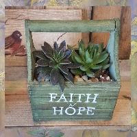 Handle Work Box Succulent Garden Plants