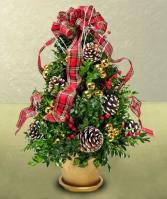 Handmade Boxwood Tree  Arrangment , WE can custom colors