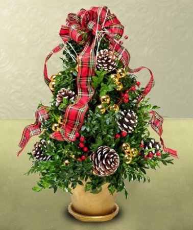 Handmade Boxwood Tree  Arrangment , WE can custom colors