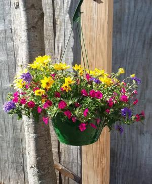 Hanging Basket 4 Outdoor in Norway, ME | Green Gardens Florist & Gift Shop