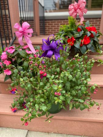 Hanging flower basket Spring