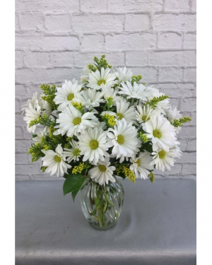 happy daisies vase arrangement in Lebanon, NH | LEBANON GARDEN OF EDEN FLORAL SHOP