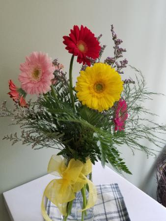 Happy Gerberas! Fresh Flowers