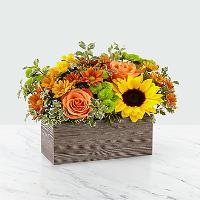 Happy Harvest - 193 Fall arrangement
