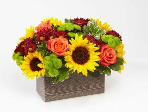Happy Harvest  in Kirtland, OH   Kirtland Flower Barn