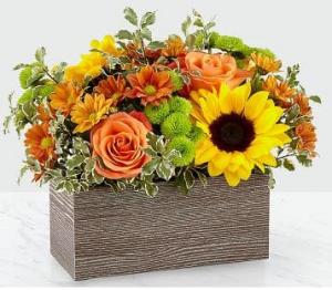 Happy Harvest Garden 19-F3 in Orlando, FL | Artistic East Orlando Florist