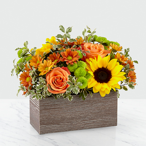 The FTD Happy Harvest Garden Any Occasion