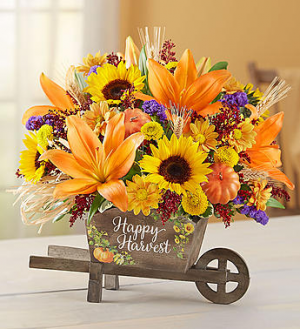 Happy Harvest Wheelbarrow  in Valley City, OH | HILL HAVEN FLORIST & GREENHOUSE