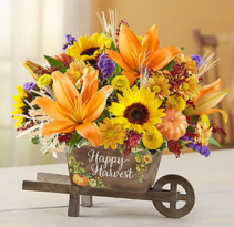 Happy Harvest Wheelbarrow Arrangement