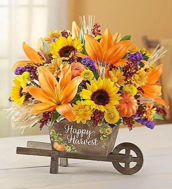 Happy Harvest Wheelbarrow From Roma Florist