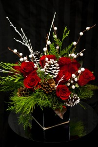 Happy Holiday Rose Cube Roses in Corner Brook, NL | The Orchid