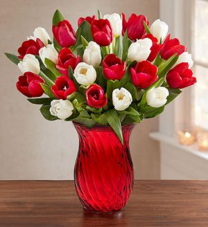 Happy Holiday Tulips in Red Vase  in Sunrise, FL | FLORIST24HRS.COM