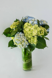 Happy Hydrangeas Vase Arrangement.