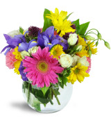 Happy in Colours  Flower Arrangement