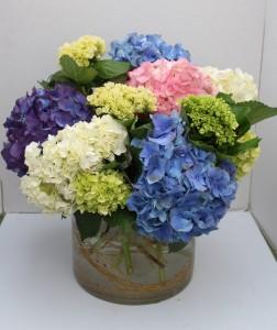 Happy Hydrangeas Fresh vase arrangement in Troy, MI | DELLA'S MAPLE LANE FLORIST