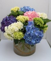 Happy Hydrangea Arrangement