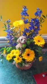 Happy Puppy Basket Arrangement