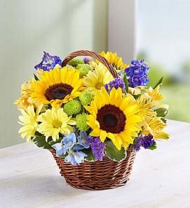 Sunshine Days fresh flowers