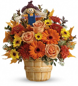 Harvest Cheer Bouquet Teleflora in Springfield, IL | FLOWERS BY MARY LOU INC