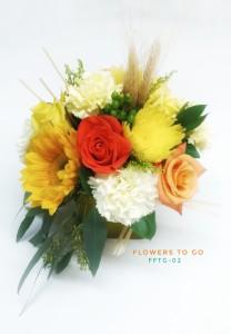 Harvest Fields FFTG-02