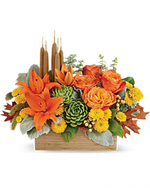 Harvest Garden  in Sunrise, FL | FLORIST24HRS.COM