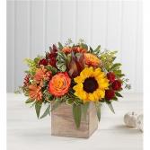 Harvest Glow Bouquet Floral Arrangement