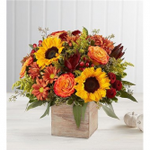 Harvest Glow Fall Arrangement