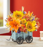Harvest Hayride Arrangement