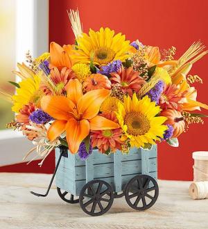 HARVEST HAYRIDE CENTERPIECE in Peoria Heights, IL | The Flower Box