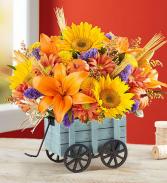 Harvest Hayride™ Flower Arrangement  ROMA FLORIST & GREENHOUSE